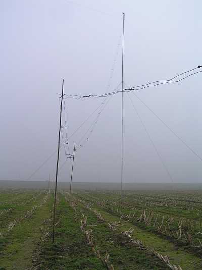This is the HEDZ again, pole B. You can see the feeder going up to the antenna.